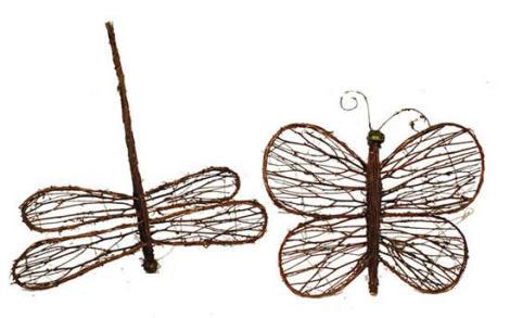 Farfalla e Libellula
